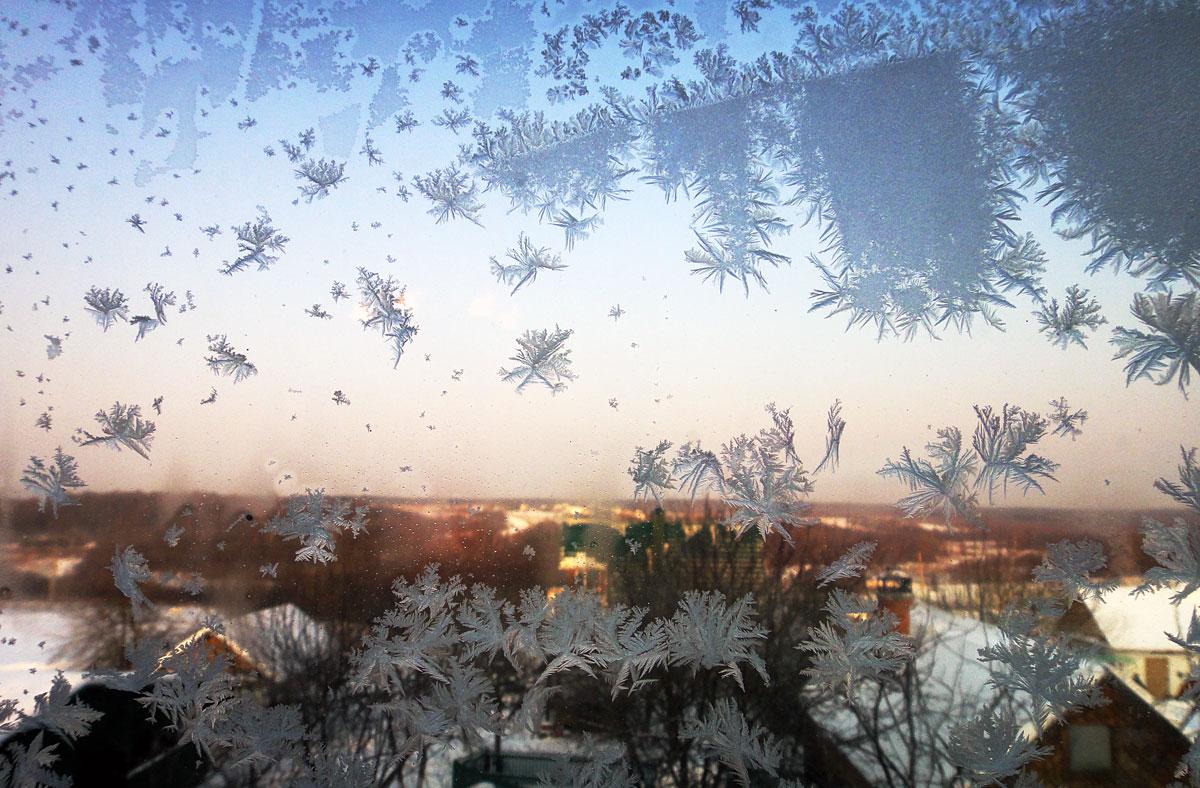 Из нашего окна
