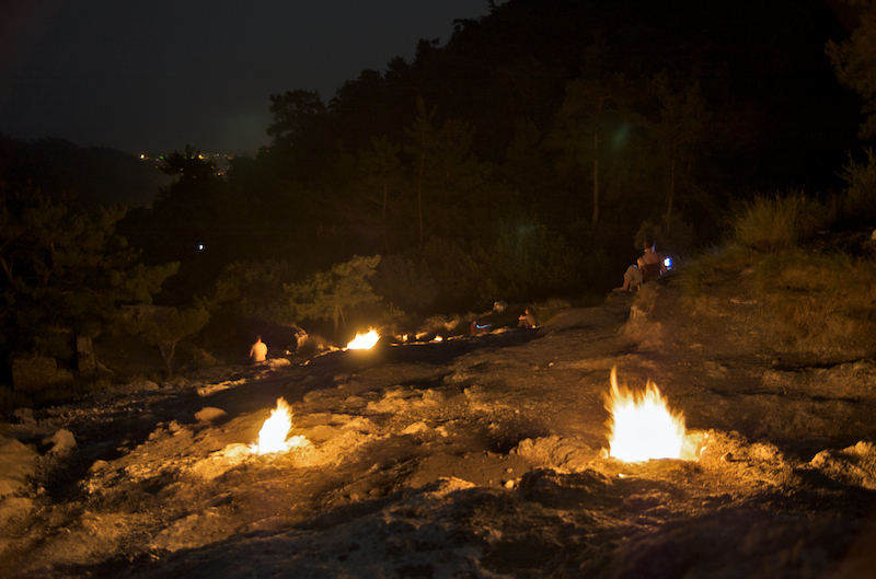 огни химеры отзывы с фото чрезвычайно живуч