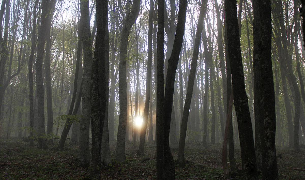 Утро на Ангарском перевале