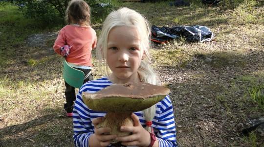 Белый гриб у Канозера