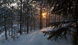 Новый Год со снегом